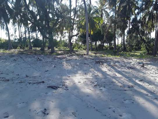 OCEANFRONT LAND FOR SALE IN TANGA CITY image 6