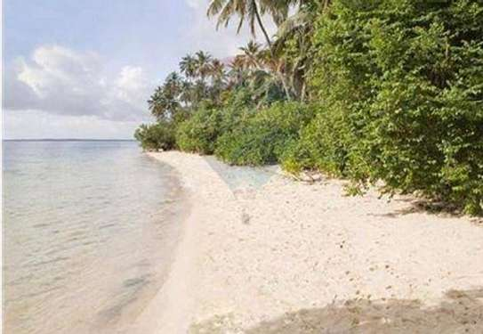 9 Acres plot with mangrove forest beach for sale.Tsh 1.2b image 1