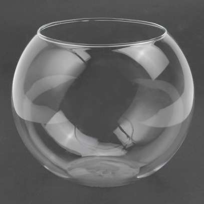 Mini Fish Bowl