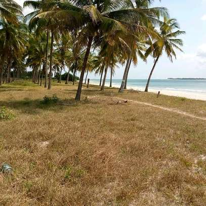 BUY OUR PRIME LOCATION KIGAMBONI BEACH PLOT TO BUILD YOUR DREAM HOTEL image 1