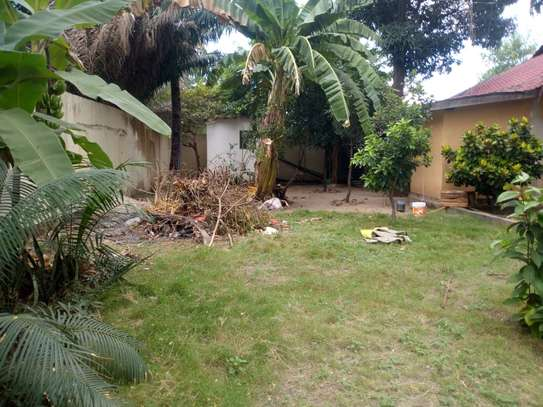 4 bed room big house with nice garden at mikocheni image 6