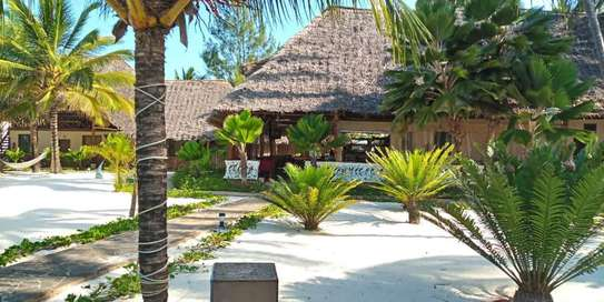 12 Bedrooms Beach Lodge in - Zanzibar Island image 5