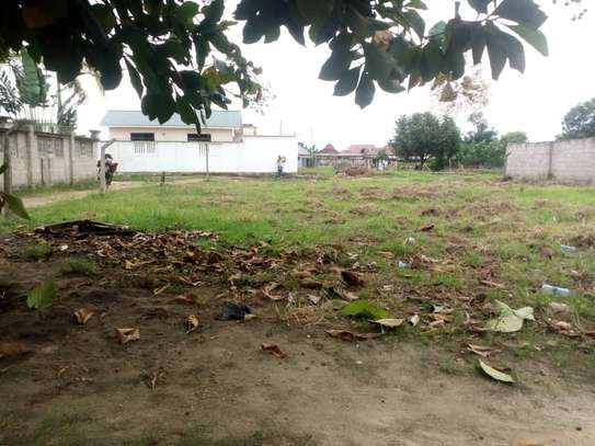 plot for sale at boko magengeni image 2