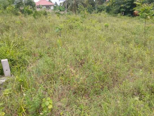 Plot for sale Mbezi kwa Joseph, km 2 from the main road image 2
