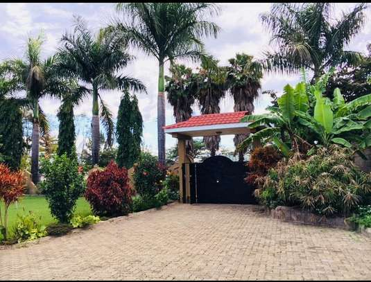 A NICE HOUSE FOR SALE IN ARUSHA. image 5
