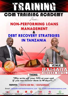 Non Performing Loans Management & Debt Recovery Strategies in Tanzania image 1