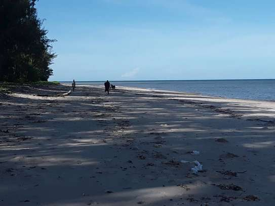 OCEANFRONT LAND FOR SALE IN TANGA CITY image 2