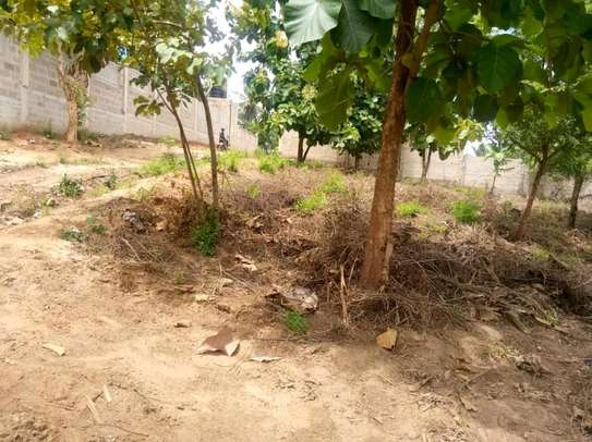Plot for sale t sh mL 35 image 5