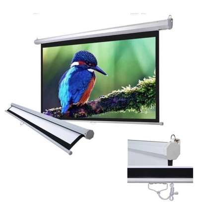 Manual Projector Screen - 150 Inches image 6