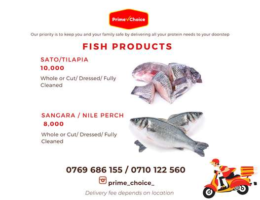 Fish Products for Sale