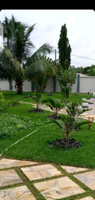 5 Bdrm Executive New Bungalow House Sqm 3500. in Mbezi Beach image 9
