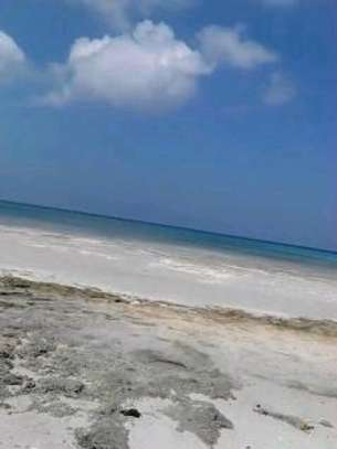4700 Sqm Beach Plot in  Kigamboni.