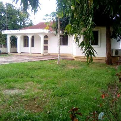 House for rent at tegeta masait image 1