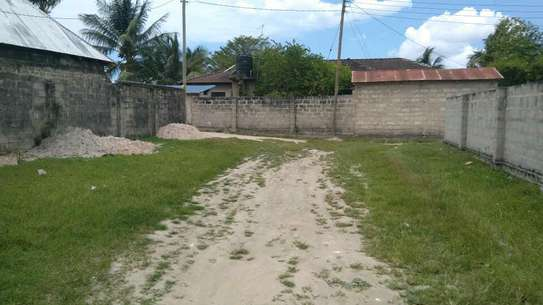OWN VERY LOW PRICE LAND ONLY 2 KMS FROM FERRY image 3