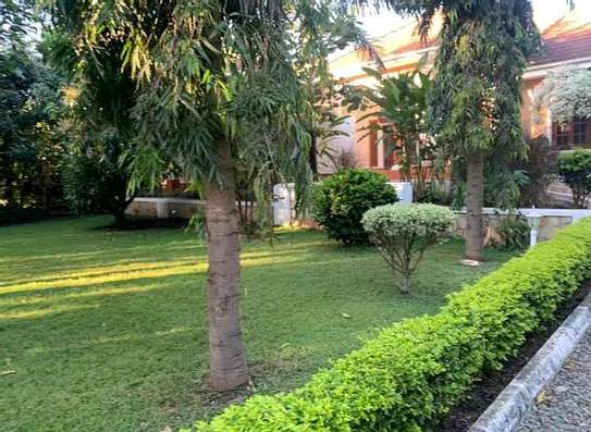 AVAILABLE FOR RENT  A 5 BEDROOM VILLA  IN ARUSHA image 2