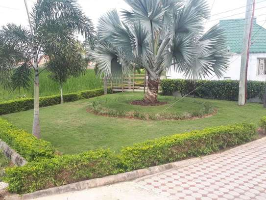4bed house  with big compound   2 acres at bahari beach i deal fot ngos or big diplomatic familly image 6
