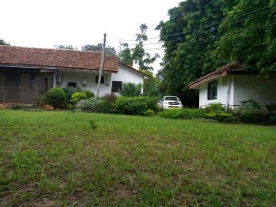 4bed houde at oyster bay $2000pm image 1