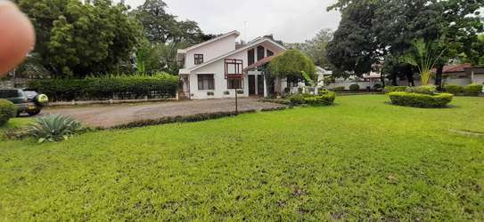 4 Bedrooms Large House For Rent In Oysterbay