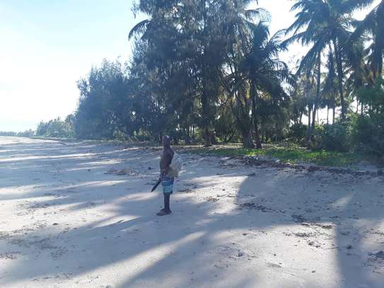 OCEANFRONT LAND FOR SALE IN TANGA CITY image 4