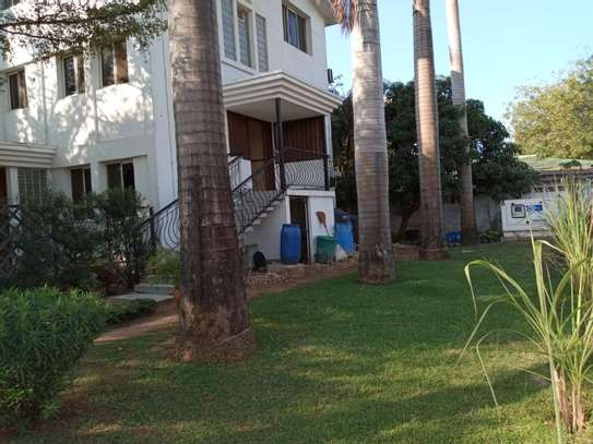 3bed furnished  apartment at mikocheni $600pm image 12