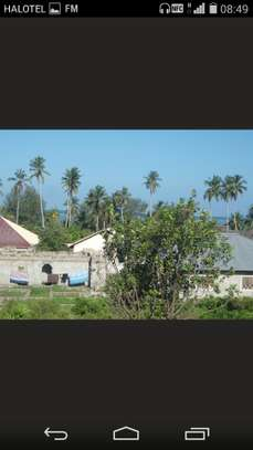 Seaside Plot at Kiwengwa Village-Zanzibar Island image 6