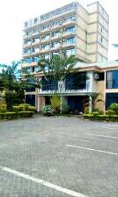 2bdrms serviced apartment for rent located at Mikocheni opposite regency park hotel image 1