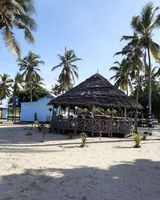 9 ACRES BEACH PLOT  AT BAGAMOYO image 3