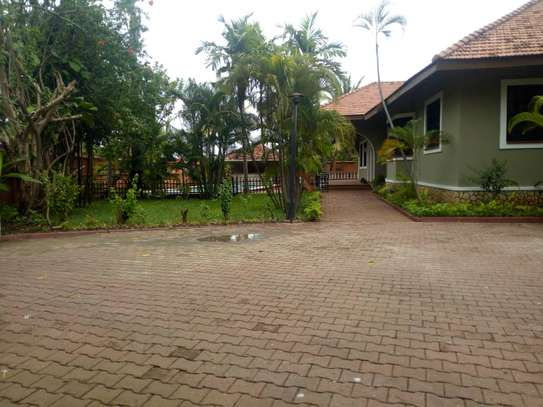 4bed room house at masaki $5500pm image 3