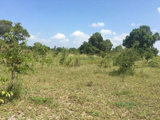 FARMLAND FOR SALE AT BUMA IN BAGAMOYO TOWN image 1