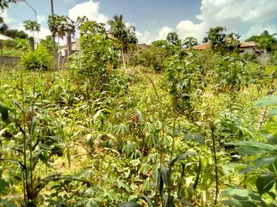 1 Acre land going cheap at Pugu Center/corner image 2
