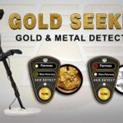 GOLD SEEKER DEVICE 1 SYSTEM image 1