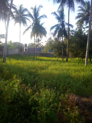 3000 SQM. Beautiful Residential Plot close to Tarmac road at Goba.