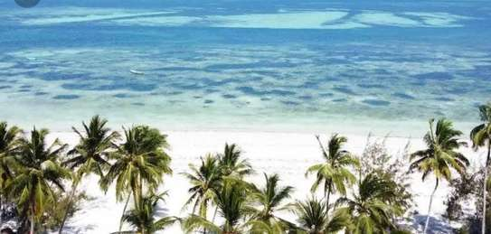 DO YOU WANT TO QUICKLY SELL YOUR KIGAMBONI BEACH PLOT image 3