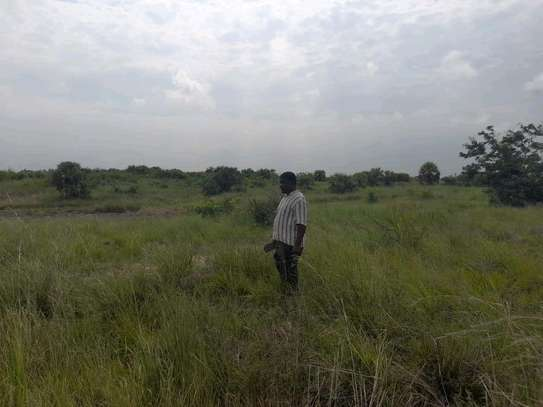 Plots for sale at Kigamboni image 2