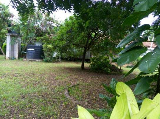 4bed house at oyster bay $2000pm z image 14