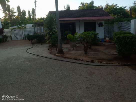 4bed house at white masakiwith swimming pool $2000pm image 3