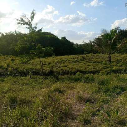 Plot for sale at Wazo image 2