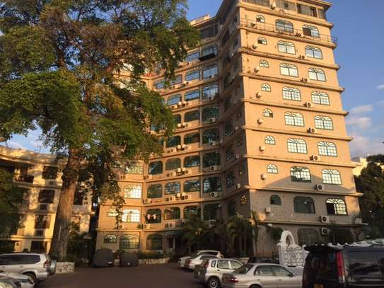 2 BEDROOM FULLY FURNISHED APARTMENT FOR IMMEDIATE LEASE IN UPANGA image 1