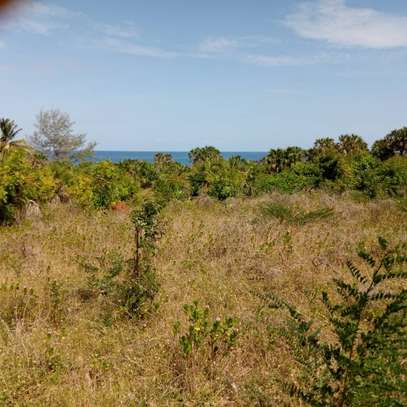 Beach plot for sale-Cheka Kigamboni image 4