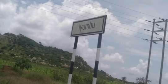 Iyumbu plots for sale, at affordable price image 2
