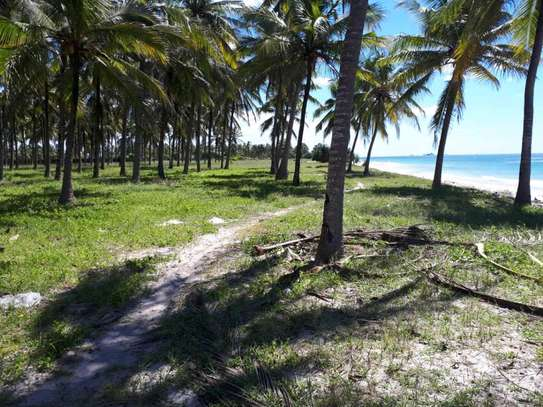 1  Acres Beach Plot for sale in kigamboni image 3