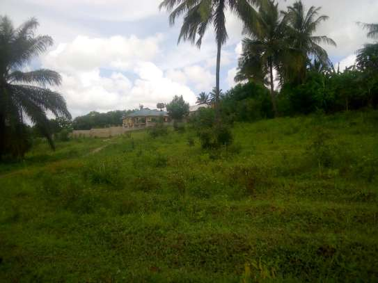 3000 Surveyed Plot Near Tarmac road at Goba image 1