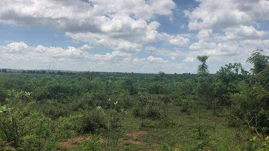 6.5 acre at lugano kinyenze tsh 700,000 image 13