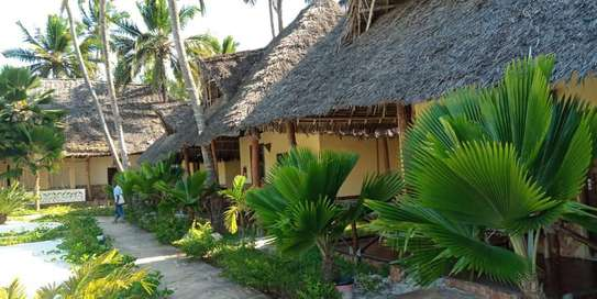 12 Bedrooms Beach Lodge in - Zanzibar Island image 7