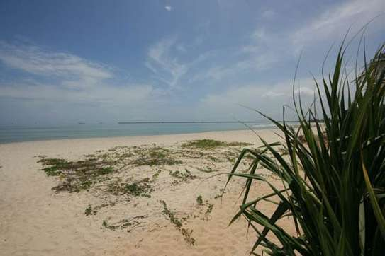 Beach houses for Rent along the white sands of Mbezi Beach