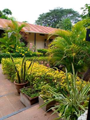 Nice 3bedroom house in oysterbay $1500 image 2