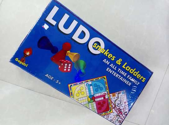 Ludo & Snakes and ladders image 1