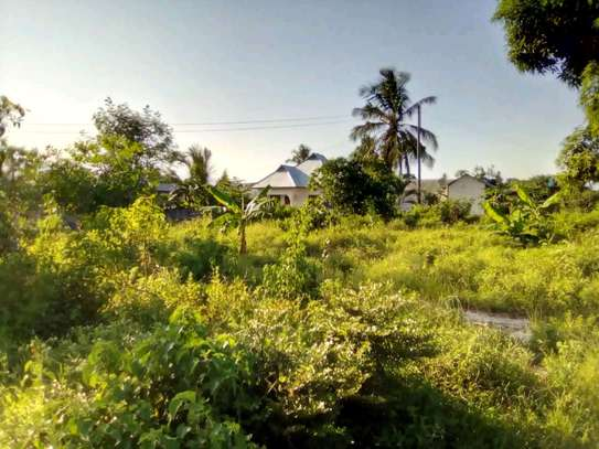 4000SQM. PLOT WITH TITLE DEED GOING CHEAP AT BUYUNI-CHANIKA image 1