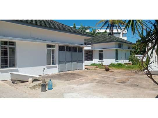 4 bed big house for rent at masaki $1500 image 6