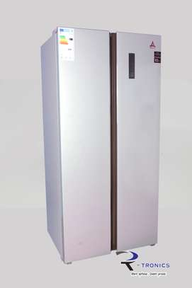 Delta Double Door Frost Free Side By Side Refrigerator